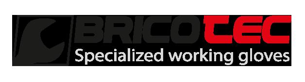 logo_bricotec